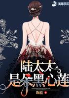 陆太太是朵黑心莲